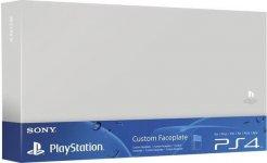 XL1_sony-ps4-custom-faceplate-silber.jpg